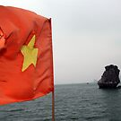 Vietnam - Along Bay by Thierry Beauvir