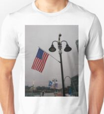 #Flag of the #United #States, #Stamford, #StamfordCity, #winter, #nature, #snow, #frost, #outdoors, #icee #cold, #wood, #season, #bird, #tree, #frozen, #dry, #garden, #grass, #weather, #colorimage Unisex T-Shirt