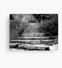 Little Path To Nowhere Canvas Print