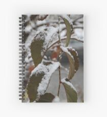 Into Winter we go.... Spiral Notebook