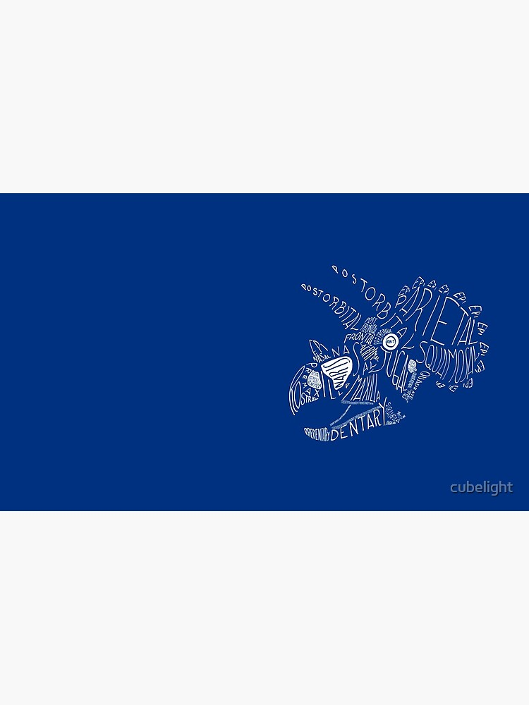 Monocolor Calligram Triceratops Skull by cubelight