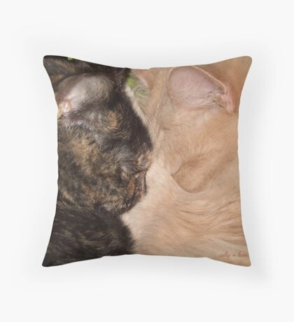 Napping Buddies Throw Pillow