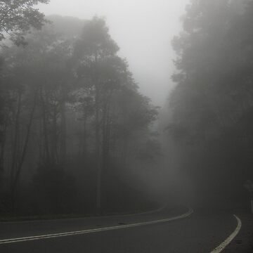The Foggy Road by LJaggs