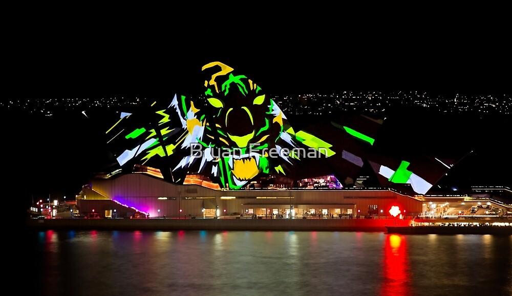 Tiger Tiger Burning Bright - Sydney Vivid Festival - Australia by Bryan Freeman