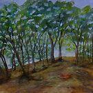 Bush Scene by Lynne Kells (earthangel)
