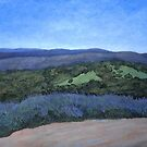 Gembrook Victoria from Forest Edge Pizza by Lynne Kells (earthangel)