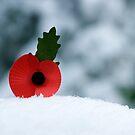 Poppy in the Snow by Ian Elmes