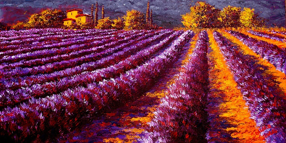 Provençal Home in the Lavender by sesillie
