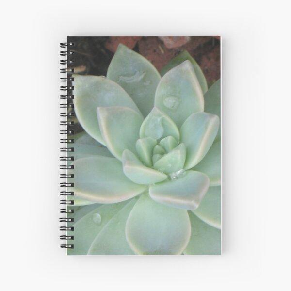 green, green.. verde, verde.. Spiral Notebook
