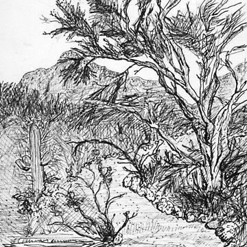A Tohono Chul walking trail by JamesLHamilton