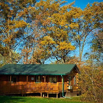 Tower Park Cabin  by LynyrdSky