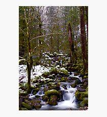 Haystack Creek, winter snow Photographic Print