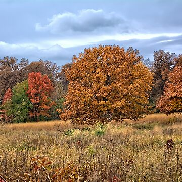 Autumn's Holdouts by LynyrdSky