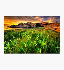 Summer Willow Lake Sunset 1 Photographic Print