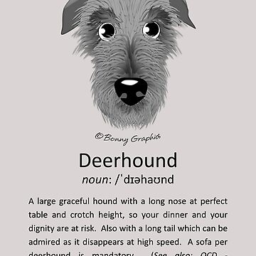 Definition of a deerhound! by BonnyGraphics