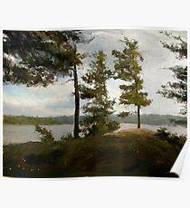 "Achray Pines  (2009)   - 30""x24"" max print size Poster"