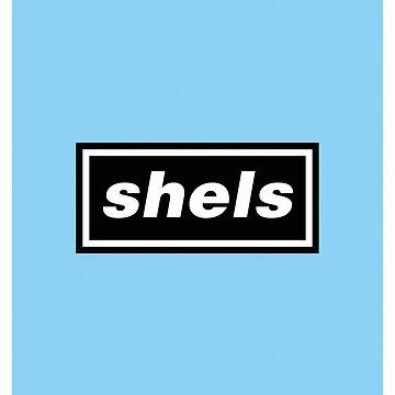 SHELS (OASIS) - PRINT by 1895Trust