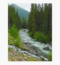 """Fraser River Tributary  (2009)  - 18""""x24"""" max print size Photographic Print"""