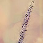 Nature I by Gben