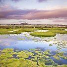 Ralphs Bay, South-East Coast Tasmania by James Nielsen