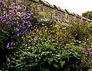 Chillingham Flower Art by Ryan Davison Crisp