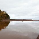 Mouth of the Gooseberry River by Dan Holtmeyer