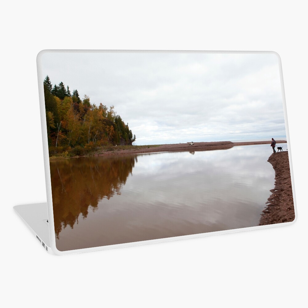 Mouth of the Gooseberry River Laptop Skin