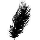 Feather by Bello Designs