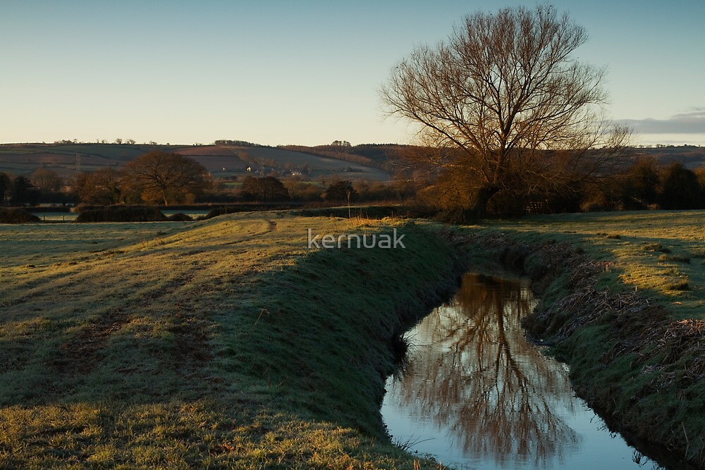 Dawn Light over The Meads by kernuak