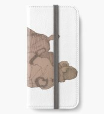 BJJ - passing the guard iPhone Wallet/Case/Skin