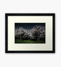 If Wishes Were Trees Framed Print