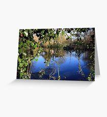 Bunratty Pond Greeting Card
