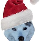 Husky with Red Santa Hat by May Finch