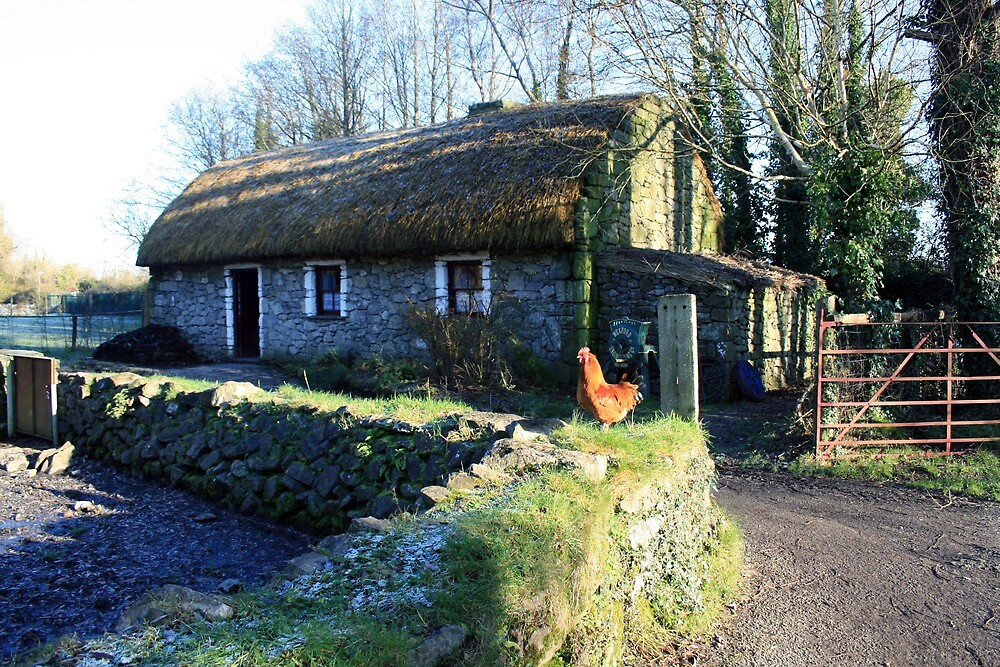 Irish thatched cottage by John Quinn