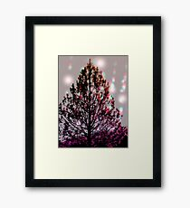 mother natures christmas tree Framed Print