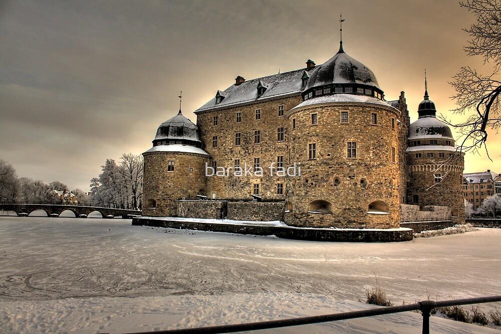 Ice castle by baraka fadi