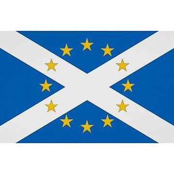 Schots, Europees en trots erop by Ranald