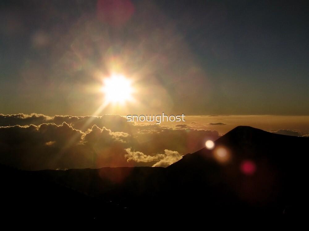 new horizons by sabrina card