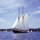 Bluenose 2 -Halifax Harbour by George Cousins