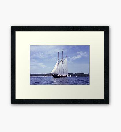 Bluenose 2 -Halifax Harbour Framed Print