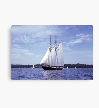 Bluenose 2 -Halifax Harbour Canvas Print
