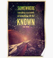 Weltraumforschung (Carl Sagan-Zitat) Poster