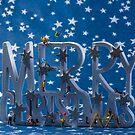 Downsizing Merry Christmas by Alan Organ LRPS