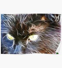 Fractalius Cat Poster