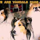 GO  VANDALS by 3DOGNIGHT