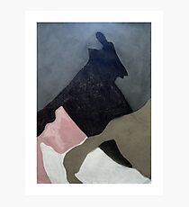 shadow-land Photographic Print