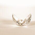 Seashell Pearl by Maria Dryfhout