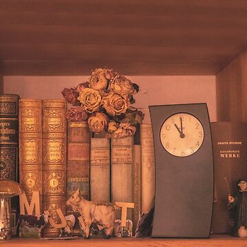PHOTOGRAPHY Vanitas Still Life Books #read by Mauswohn