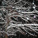 let it snow... by MandieM