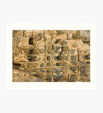 Rock Ledge Art Print